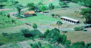 CHÁCARA 20.000 Mts2 próximo a cidade 1,5 km – REF. 408